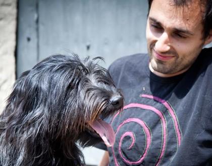 Les persones que tenen gossos i gats són més sensibles als seus gemecs d'angoixa
