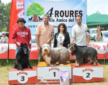 XLIV Concurs Nacional Caní d'Igualada