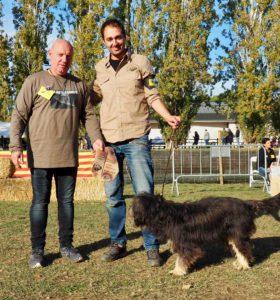 Ui. Font de la imatge: Club del Gos d'Atura Català